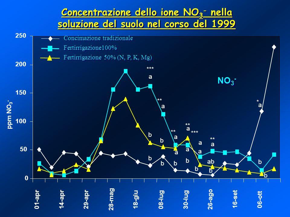 Concentrazione dello ione NO3- nella soluzione del suolo nel corso del 1999