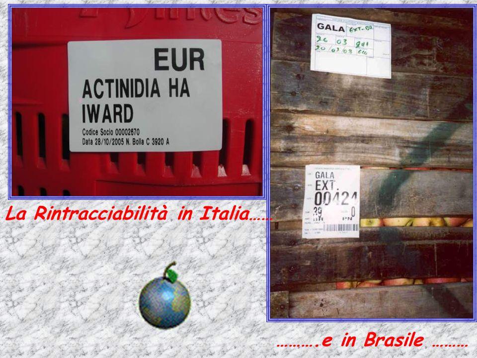 La Rintracciabilità in Italia……