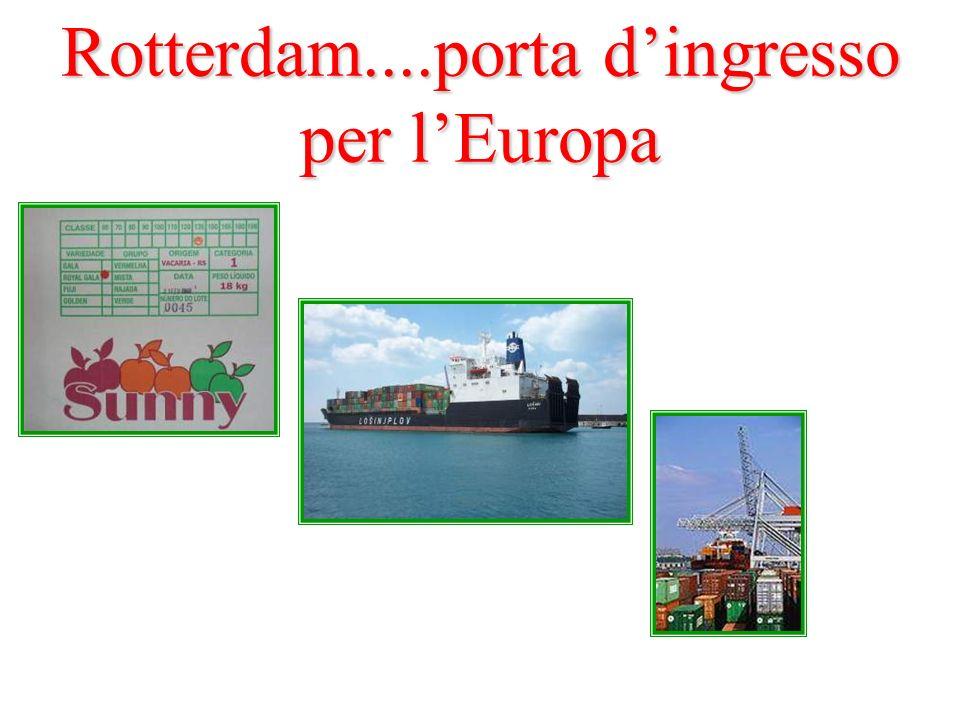 Rotterdam....porta d'ingresso per l'Europa