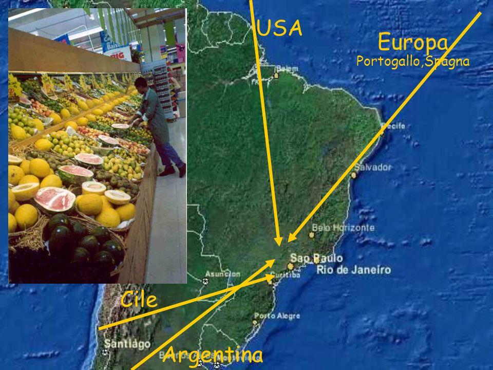 USA Europa Portogallo,Spagna Argentina Cile