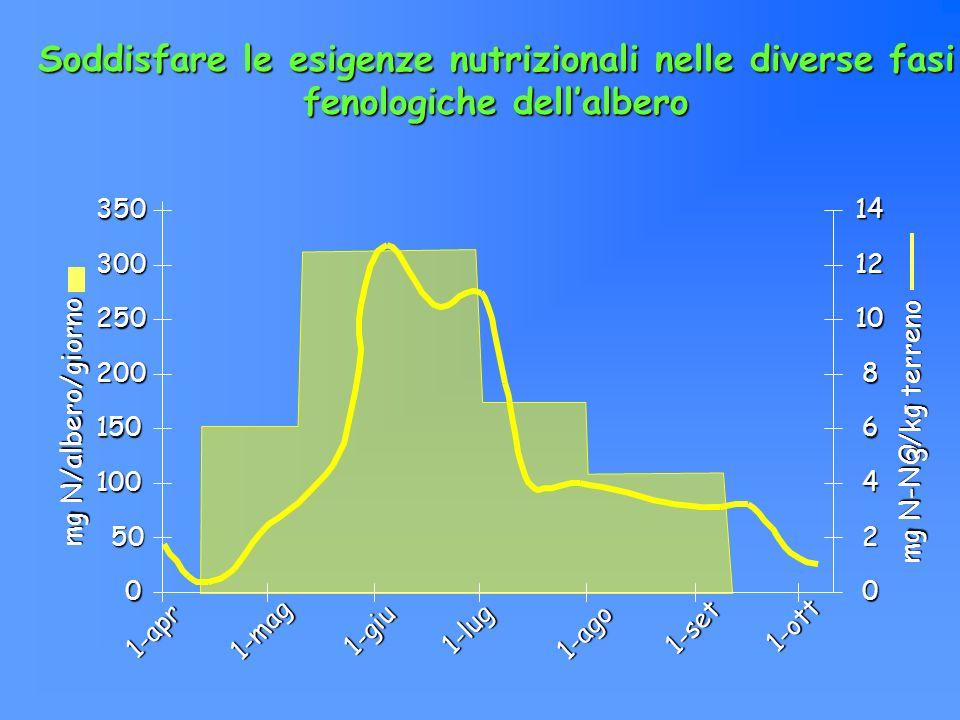 Soddisfare le esigenze nutrizionali nelle diverse fasi fenologiche dell'albero