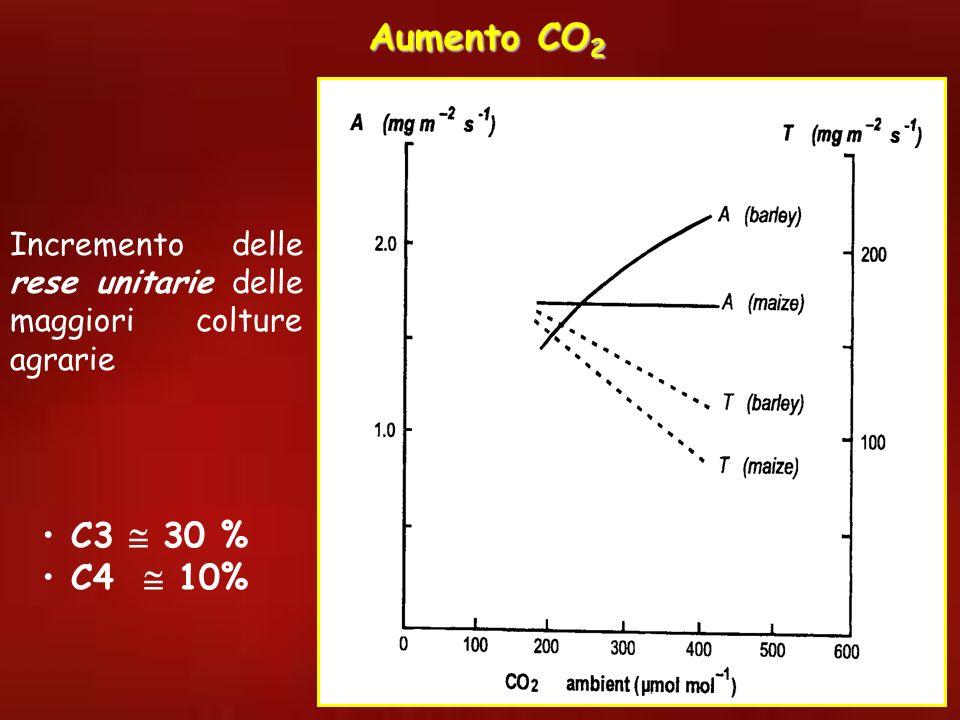 Aumento CO2 Incremento delle rese unitarie delle maggiori colture agrarie C3  30 % C4  10%