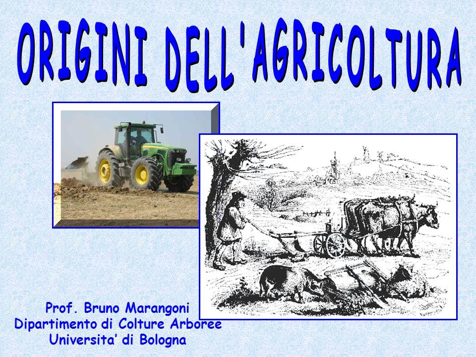 ORIGINI DELL AGRICOLTURA