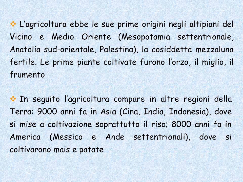 L'agricoltura ebbe le sue prime origini negli altipiani del Vicino e Medio Oriente (Mesopotamia settentrionale, Anatolia sud-orientale, Palestina), la cosiddetta mezzaluna fertile. Le prime piante coltivate furono l'orzo, il miglio, il frumento