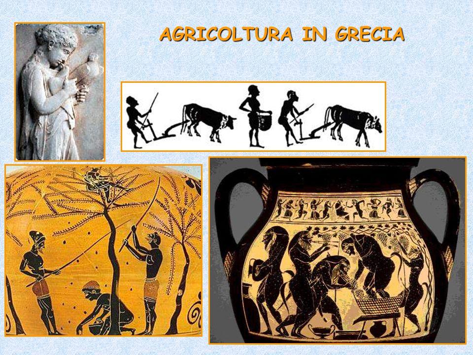 AGRICOLTURA IN GRECIA
