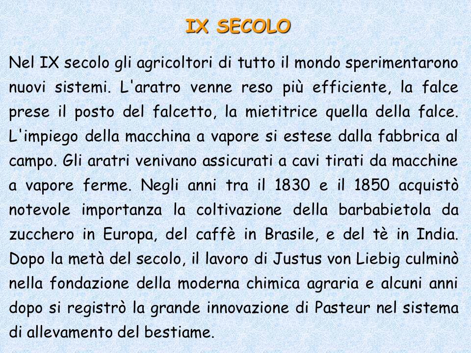IX SECOLO