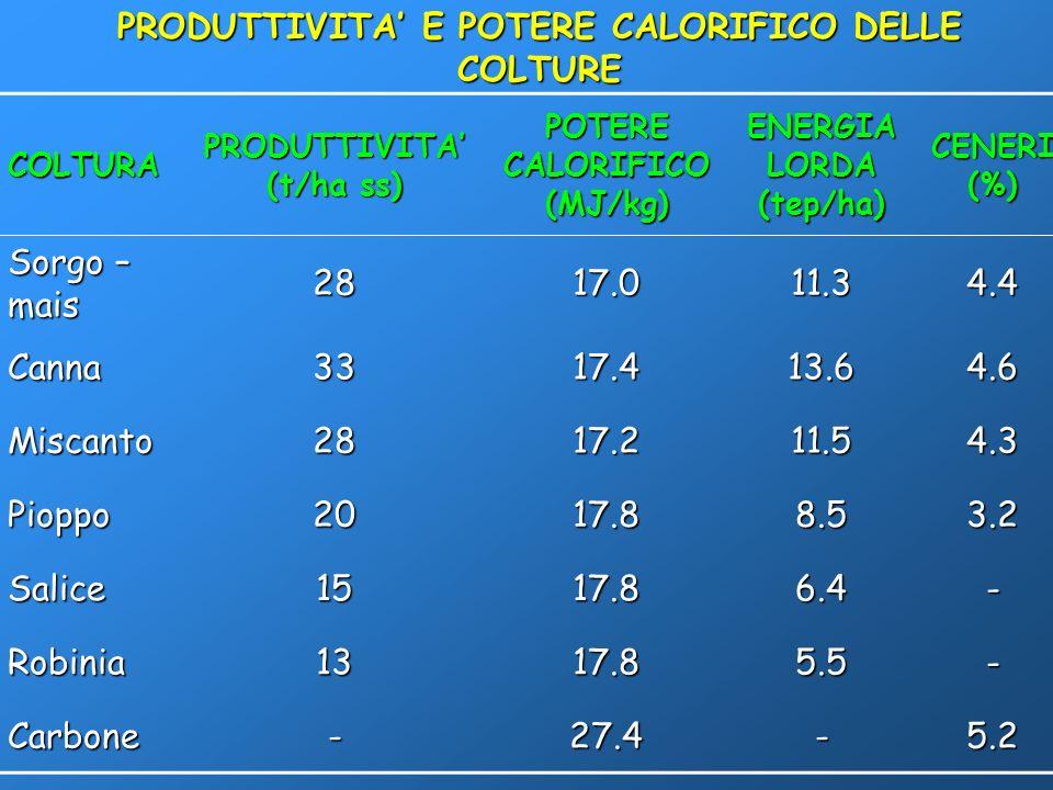PRODUTTIVITA' E POTERE CALORIFICO DELLE COLTURE