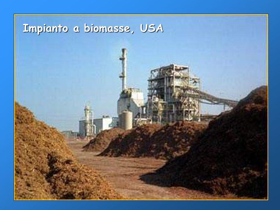 Impianto a biomasse, USA