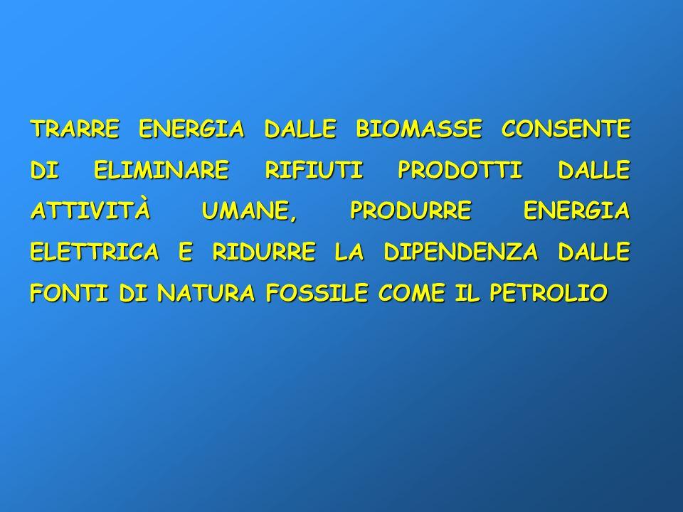 TRARRE ENERGIA DALLE BIOMASSE CONSENTE DI ELIMINARE RIFIUTI PRODOTTI DALLE ATTIVITÀ UMANE, PRODURRE ENERGIA ELETTRICA E RIDURRE LA DIPENDENZA DALLE FONTI DI NATURA FOSSILE COME IL PETROLIO