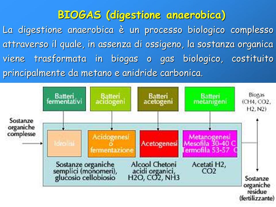 BIOGAS (digestione anaerobica)