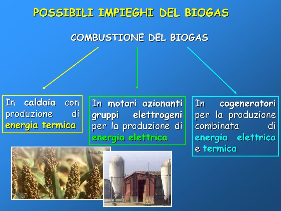 COMBUSTIONE DEL BIOGAS