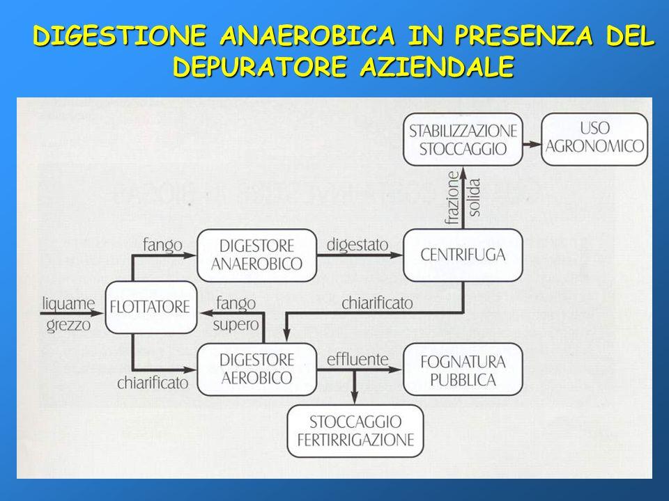 DIGESTIONE ANAEROBICA IN PRESENZA DEL DEPURATORE AZIENDALE