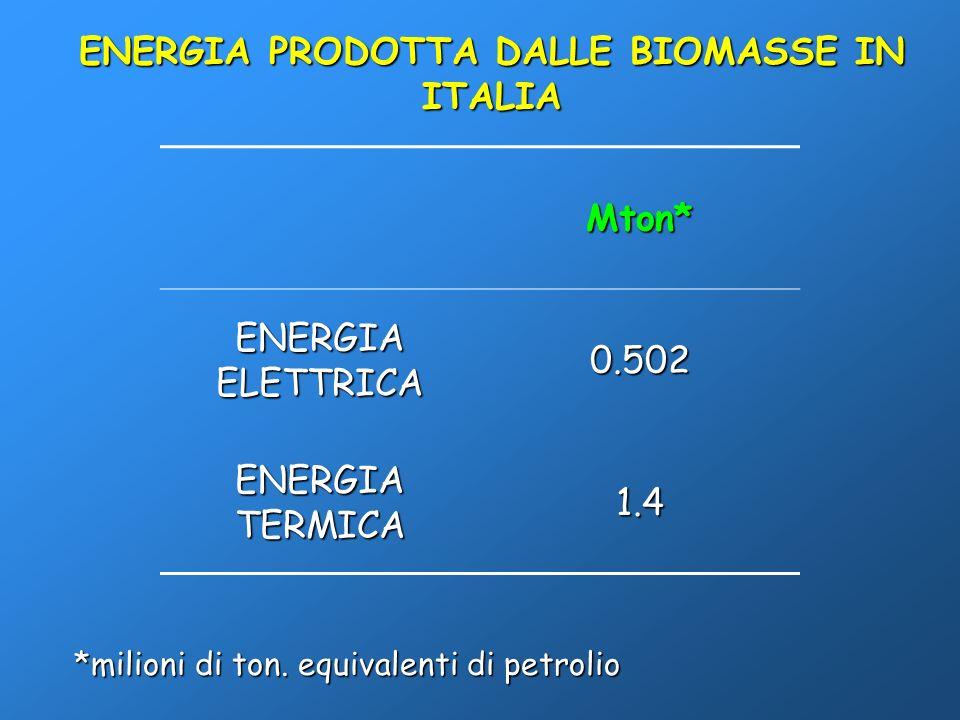 ENERGIA PRODOTTA DALLE BIOMASSE IN ITALIA