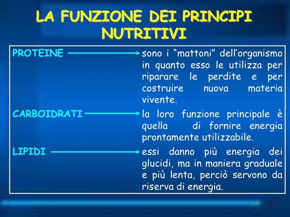 LA FUNZIONE DEI PRINCIPI NUTRITIVI