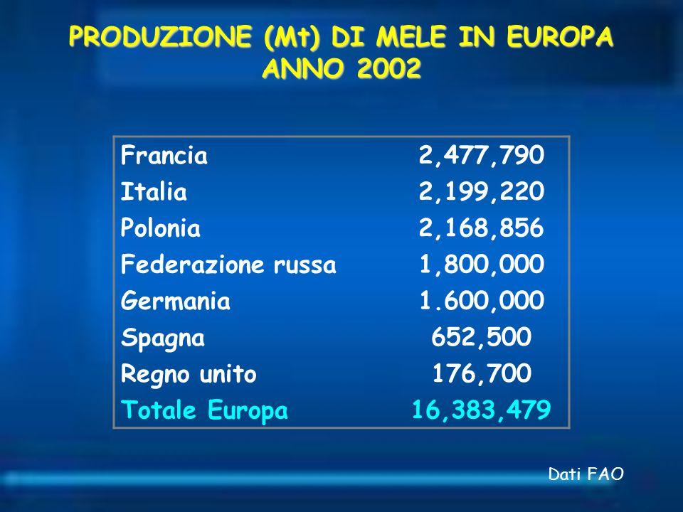 PRODUZIONE (Mt) DI MELE IN EUROPA ANNO 2002