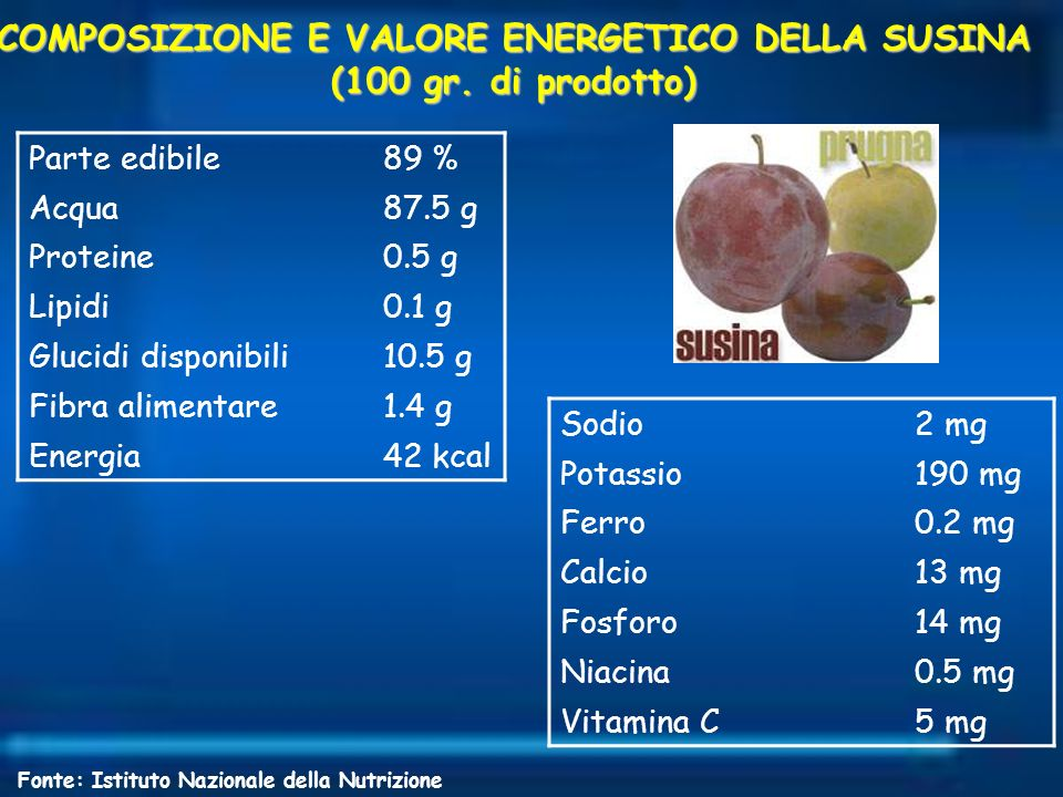 COMPOSIZIONE E VALORE ENERGETICO DELLA SUSINA (100 gr. di prodotto)
