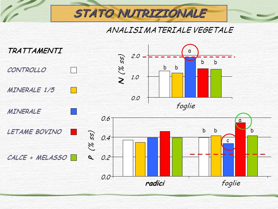 ANALISI MATERIALE VEGETALE