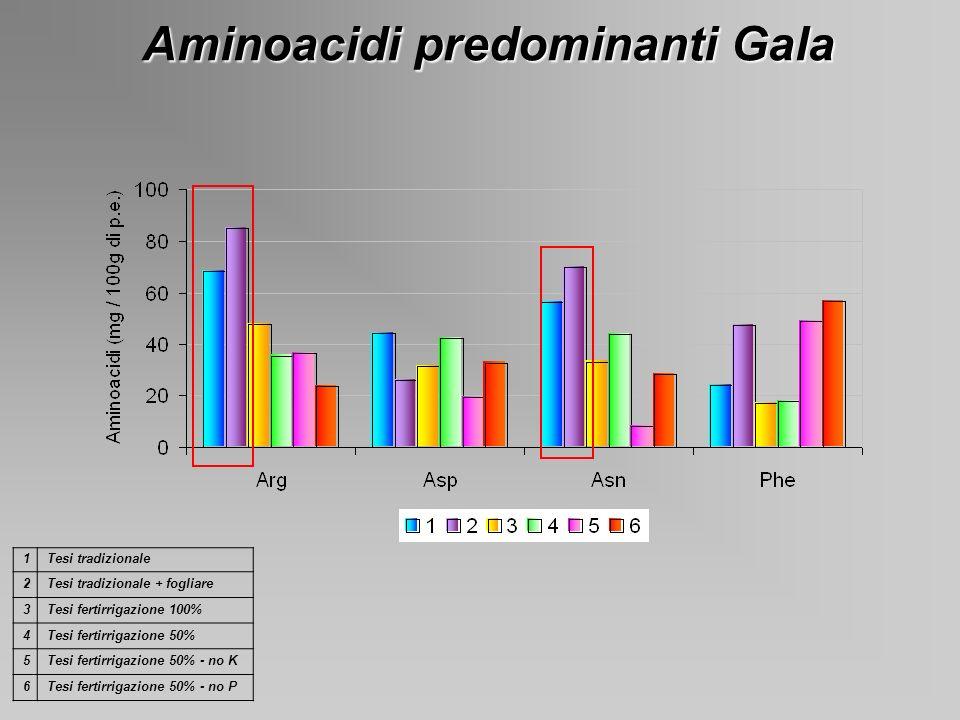 Aminoacidi predominanti Gala