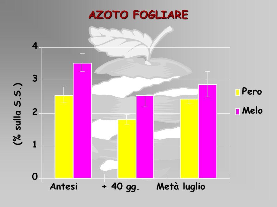 AZOTO FOGLIARE Pero 4 3 (% sulla S.S.) Melo 2 1