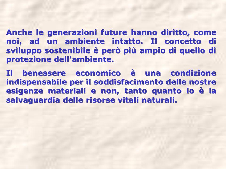 Anche le generazioni future hanno diritto, come noi, ad un ambiente intatto. Il concetto di sviluppo sostenibile è però più ampio di quello di protezione dell ambiente.