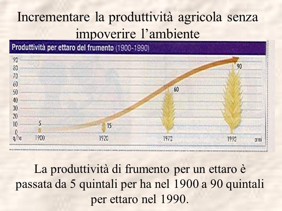 Incrementare la produttività agricola senza impoverire l'ambiente