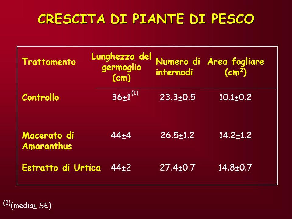 CRESCITA DI PIANTE DI PESCO Lunghezza del germoglio (cm)