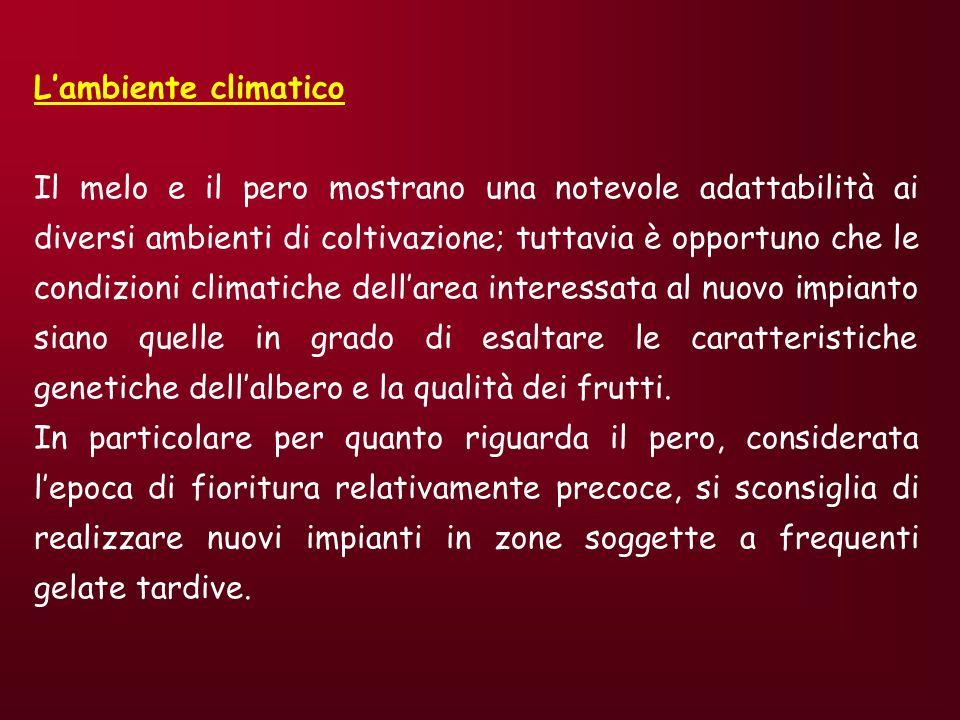 L'ambiente climatico