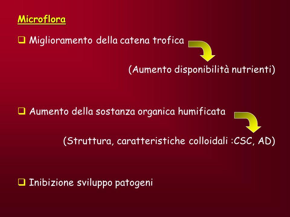 Microflora Miglioramento della catena trofica. (Aumento disponibilità nutrienti) Aumento della sostanza organica humificata.