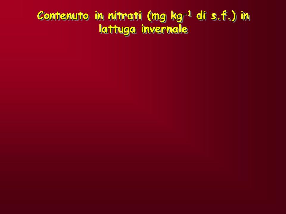 Contenuto in nitrati (mg kg-1 di s.f.) in lattuga invernale