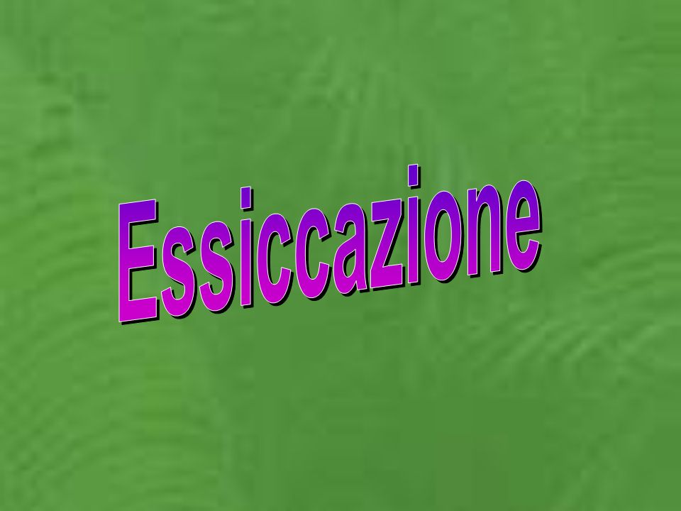 Essiccazione