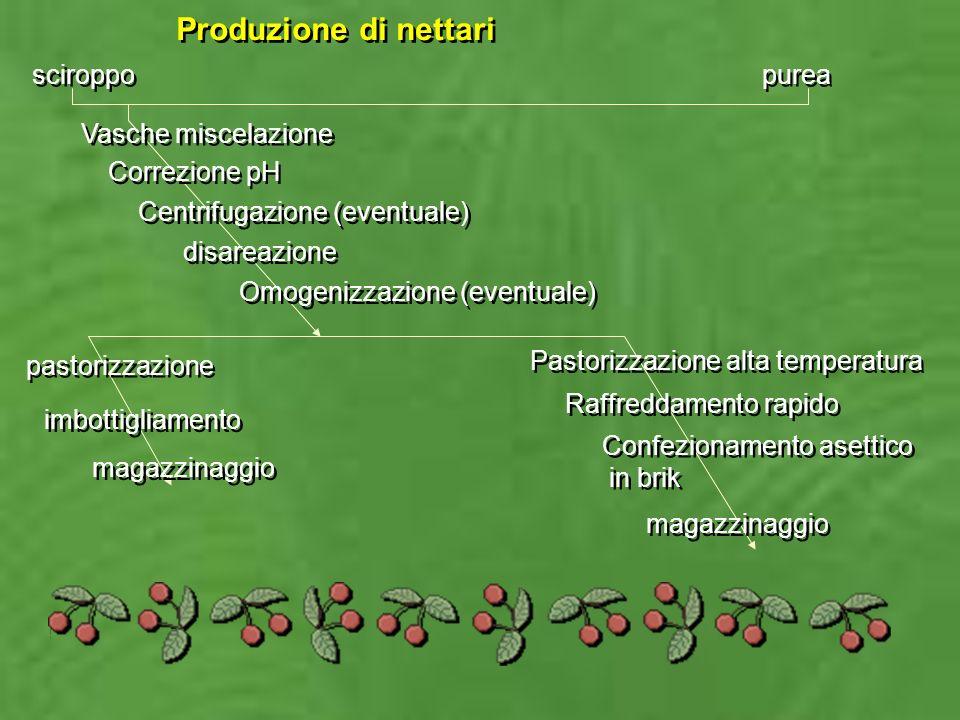 Produzione di nettari sciroppo purea Vasche miscelazione Correzione pH