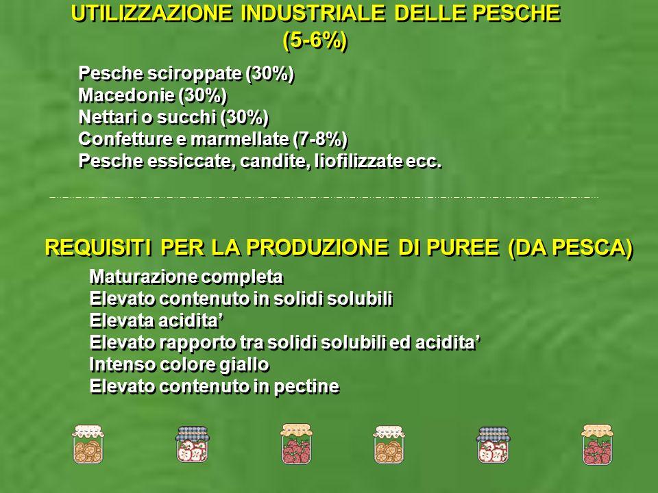 UTILIZZAZIONE INDUSTRIALE DELLE PESCHE (5-6%)