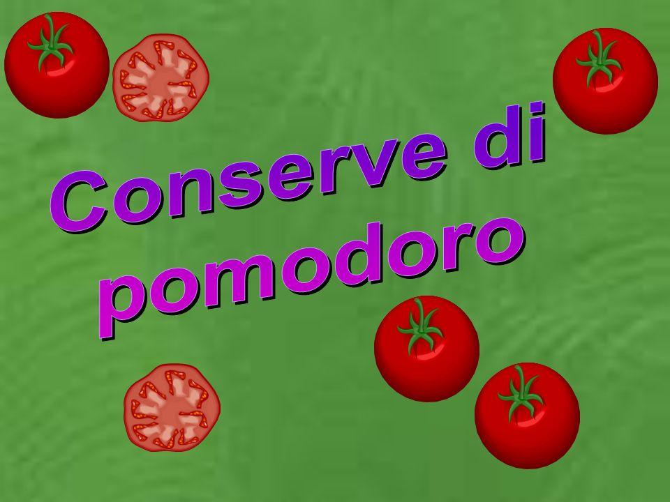 Conserve di pomodoro