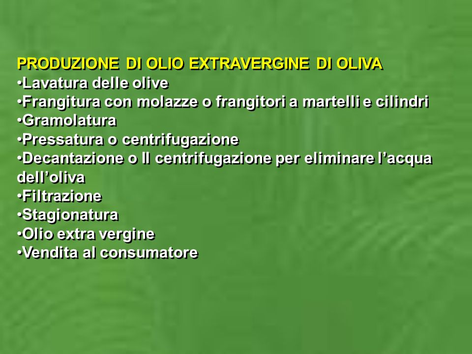 PRODUZIONE DI OLIO EXTRAVERGINE DI OLIVA