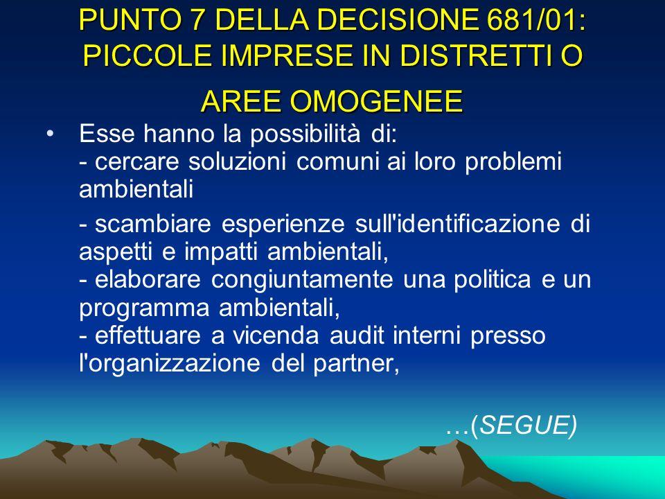 PUNTO 7 DELLA DECISIONE 681/01: PICCOLE IMPRESE IN DISTRETTI O AREE OMOGENEE