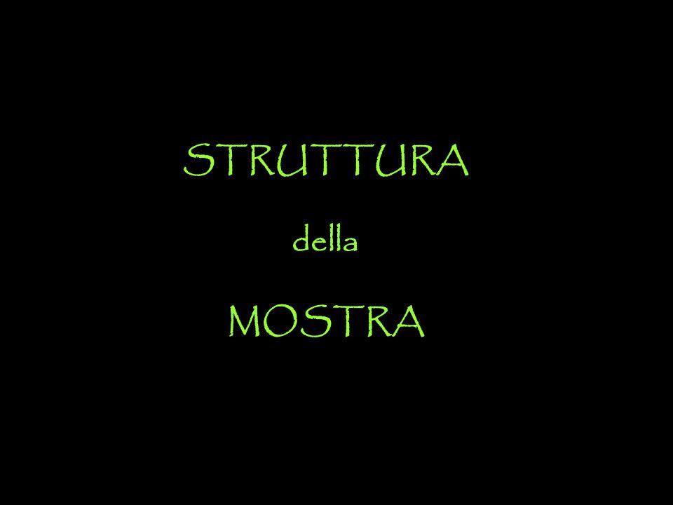 STRUTTURA della MOSTRA