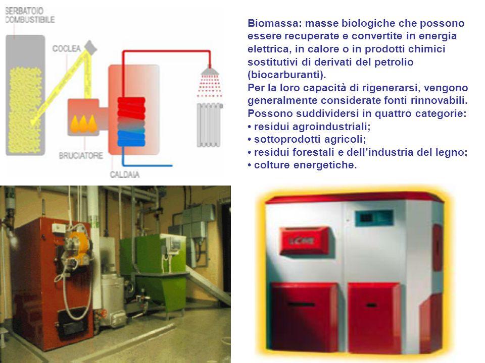 Biomassa: masse biologiche che possono