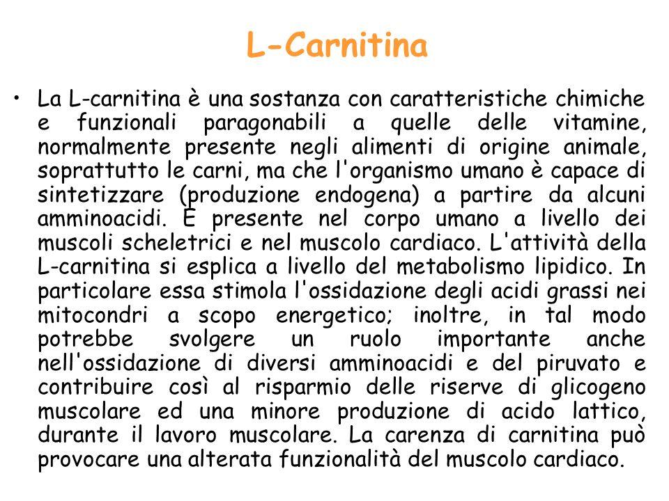 L‑Carnitina