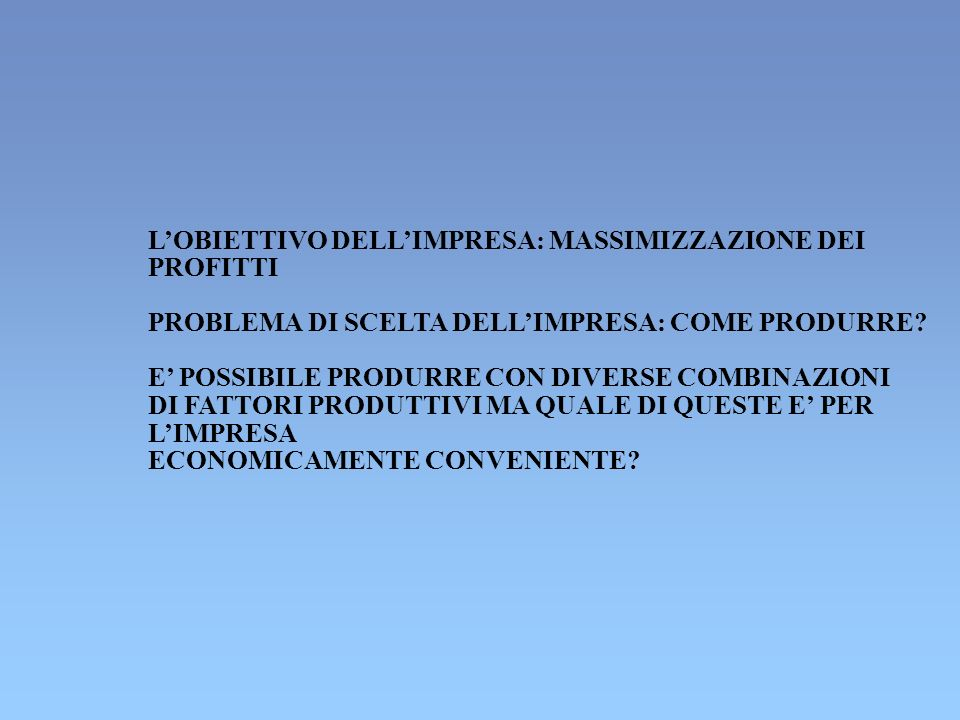 L'OBIETTIVO DELL'IMPRESA: MASSIMIZZAZIONE DEI