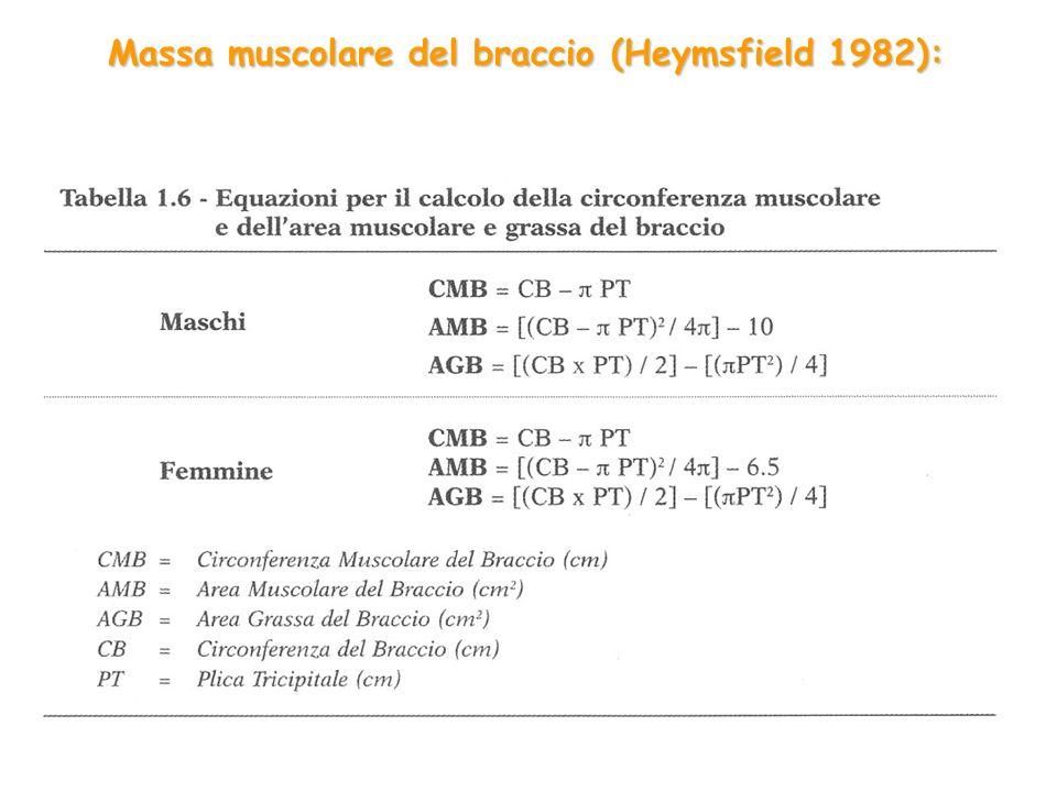 Massa muscolare del braccio (Heymsfield 1982):