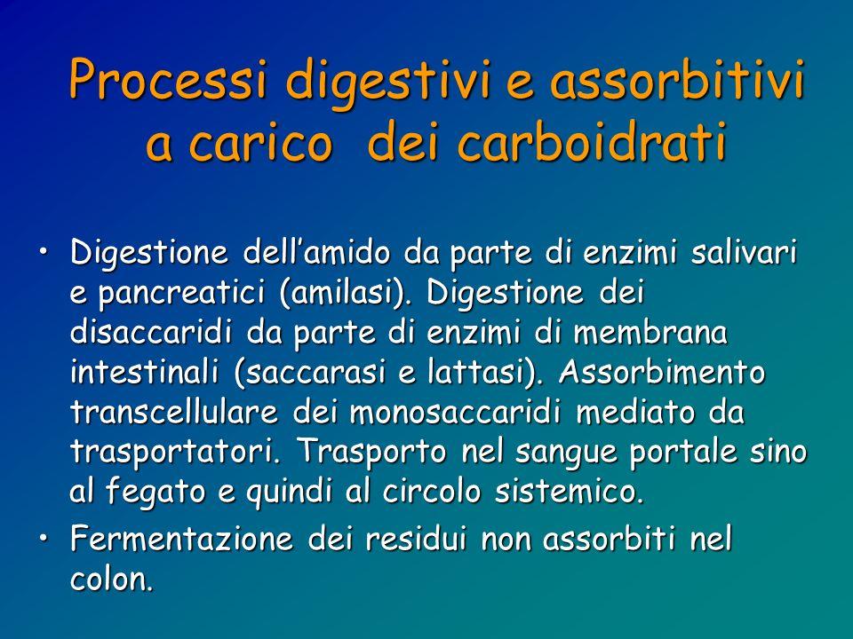 Processi digestivi e assorbitivi a carico dei carboidrati