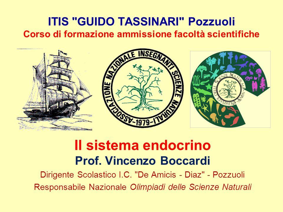 Il sistema endocrino Prof. Vincenzo Boccardi