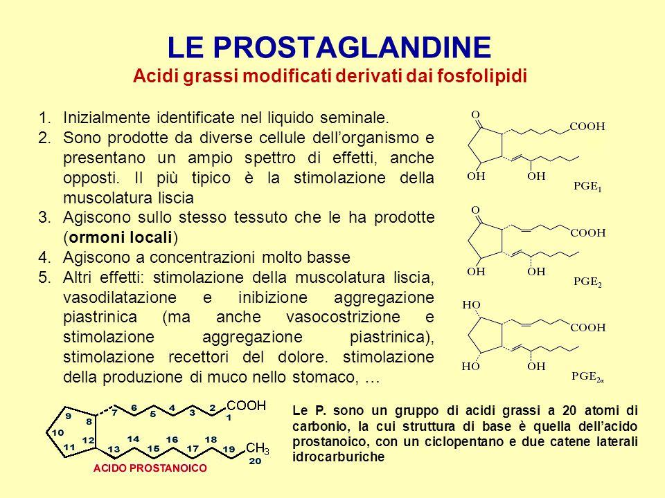 Acidi grassi modificati derivati dai fosfolipidi