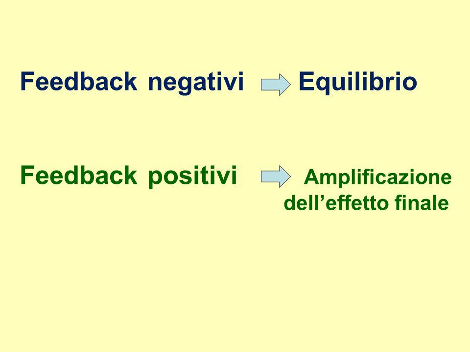 Feedback negativi Equilibrio
