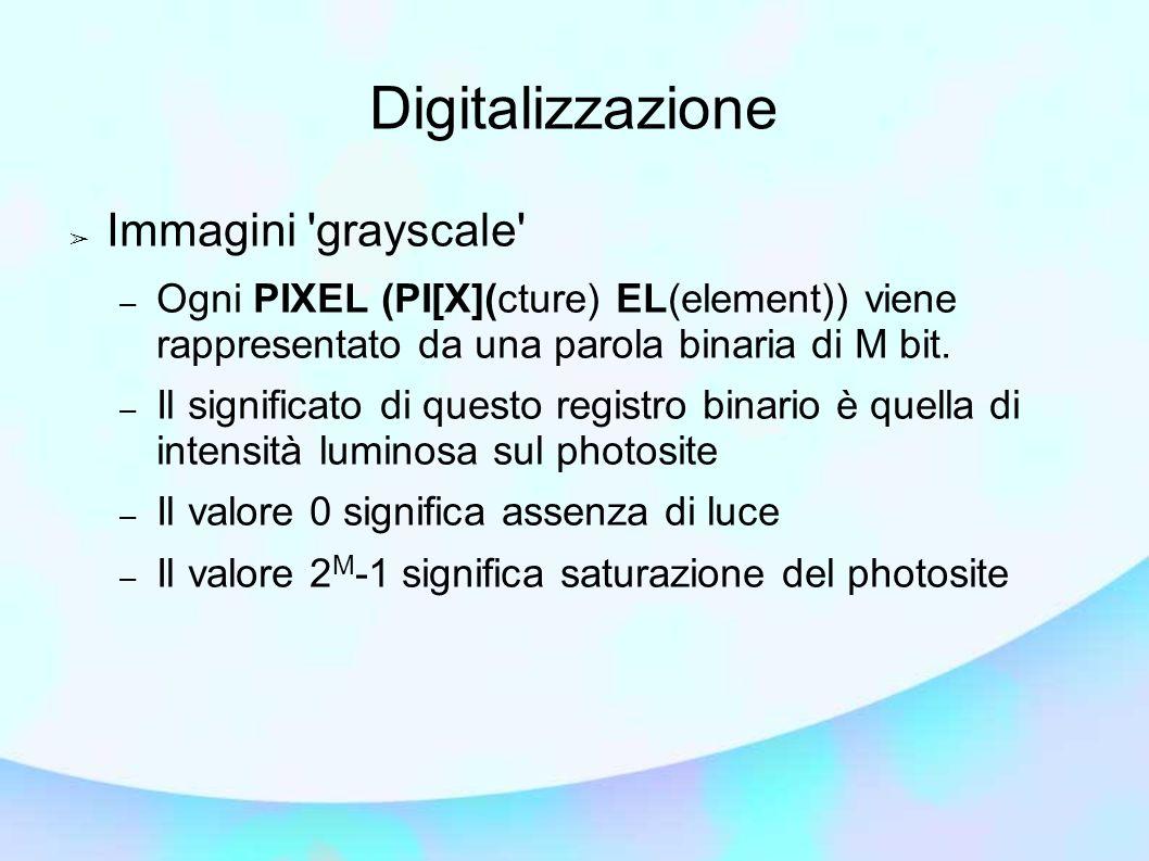 Digitalizzazione Immagini grayscale