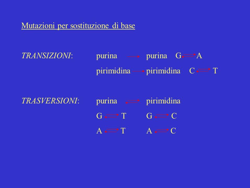 Mutazioni per sostituzione di base