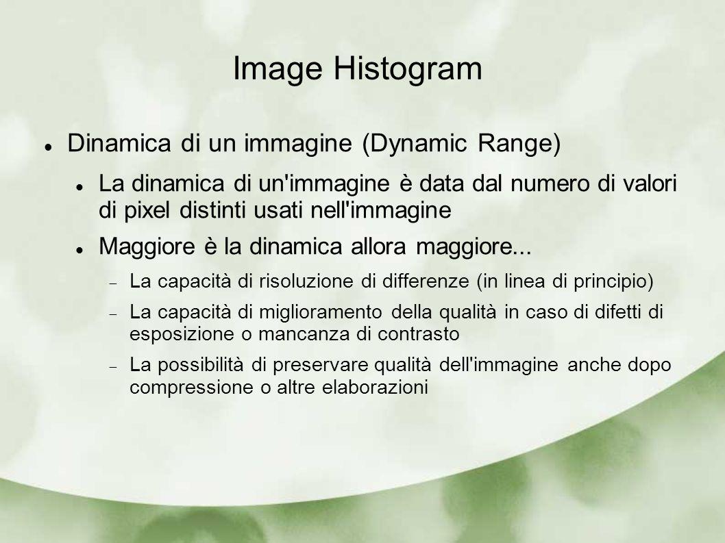 Image Histogram Dinamica di un immagine (Dynamic Range)