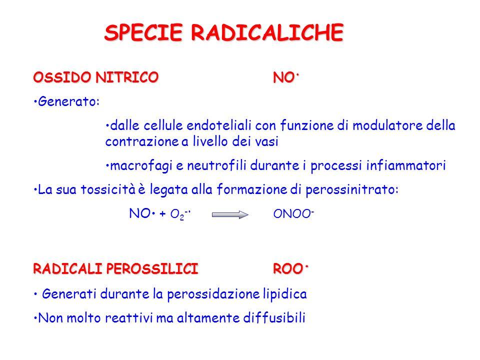 SPECIE RADICALICHE OSSIDO NITRICO NO• Generato: