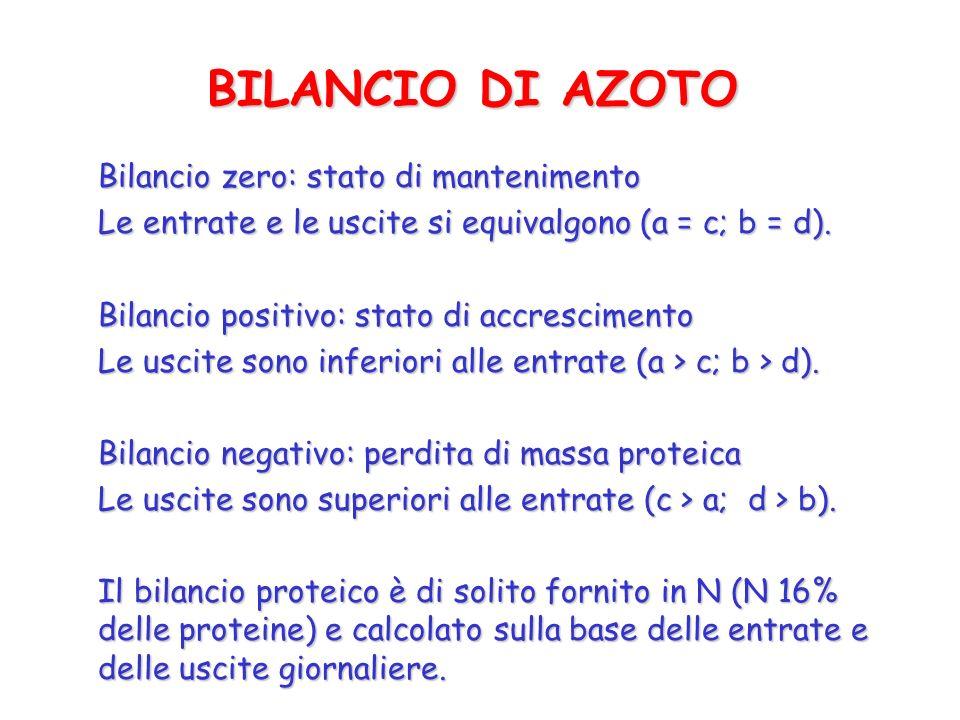 BILANCIO DI AZOTO Bilancio zero: stato di mantenimento