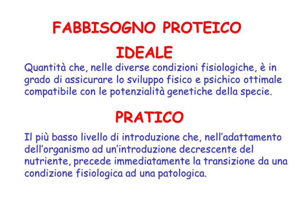 FABBISOGNO PROTEICO IDEALE PRATICO